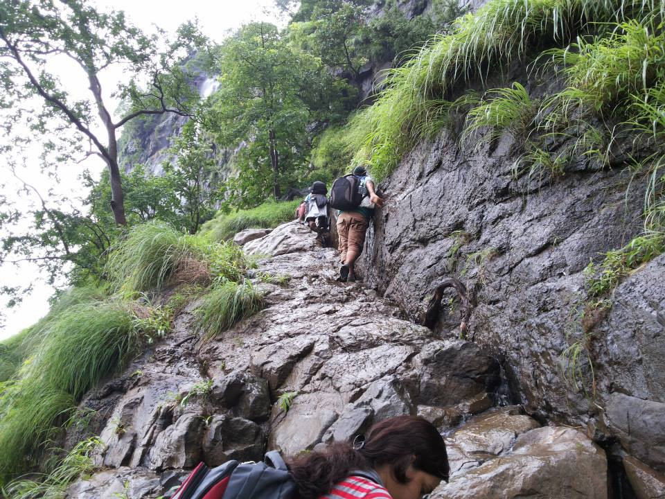 Bhimashankar-Rock-Patch