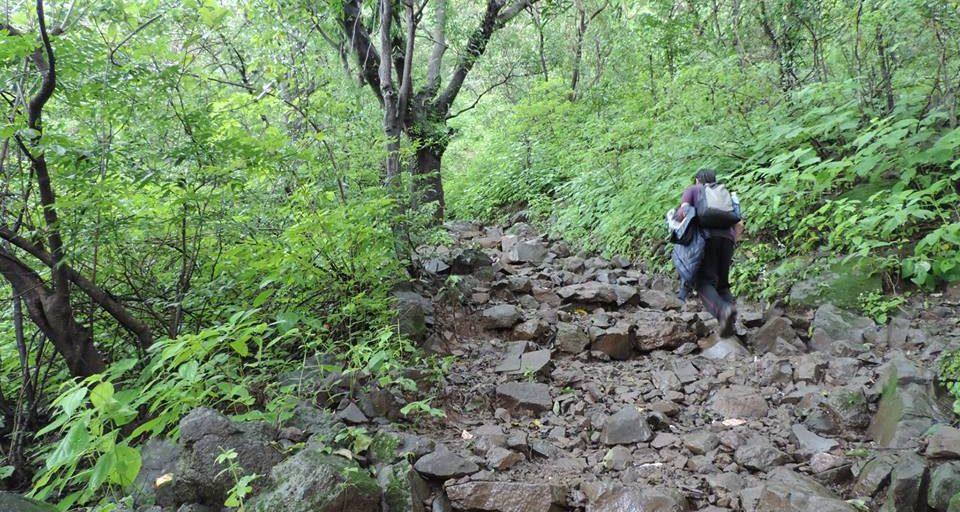Bhimashankar Trek via Shidi Ghat Blog