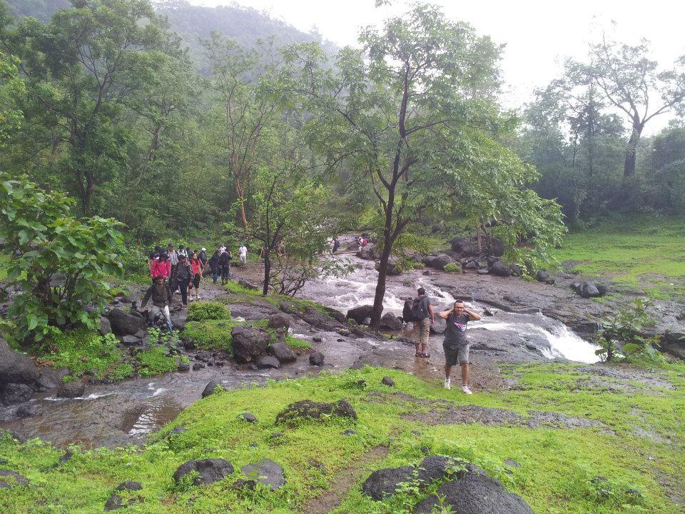 Bhimashankar-Waterfall