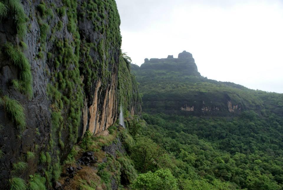 Bhimashankar-trek