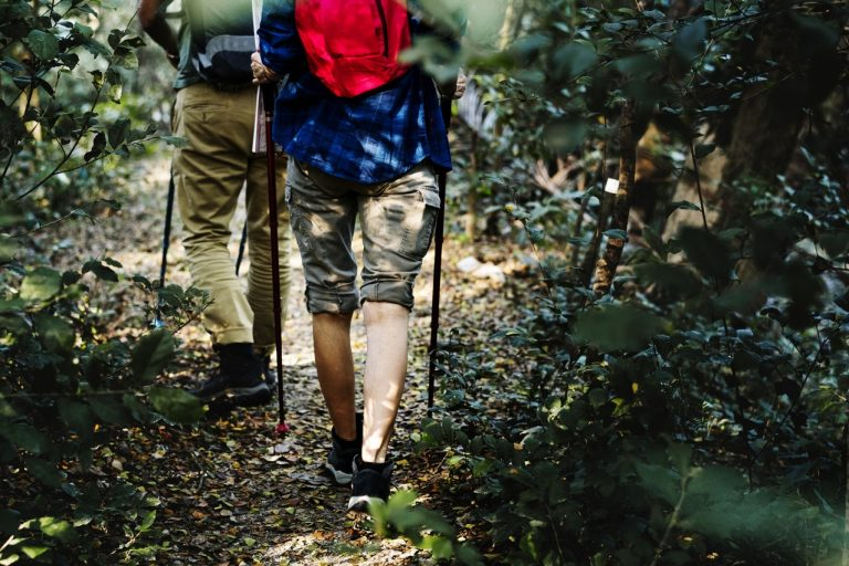 Trekking Equipment Guide