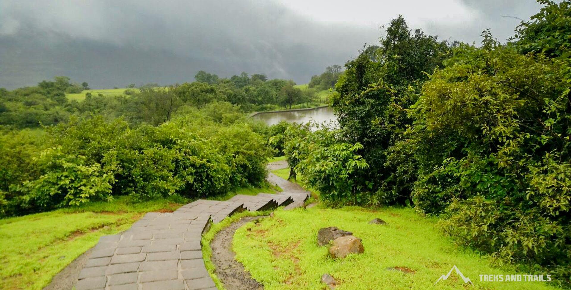 rajmachi monsoon camping
