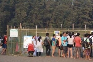Velas Turtle Conservation Center