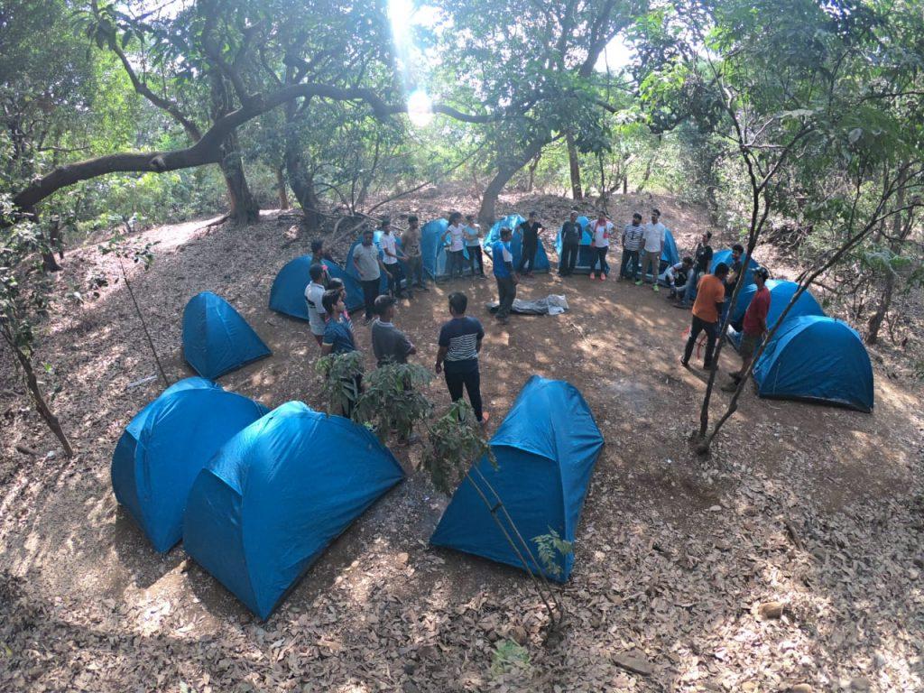 Camping-Fireflies