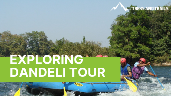 Dandeli River Rafting and Wildlife Sanctuary