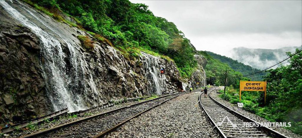 Dudhsagar-Waterfall-Trek-13