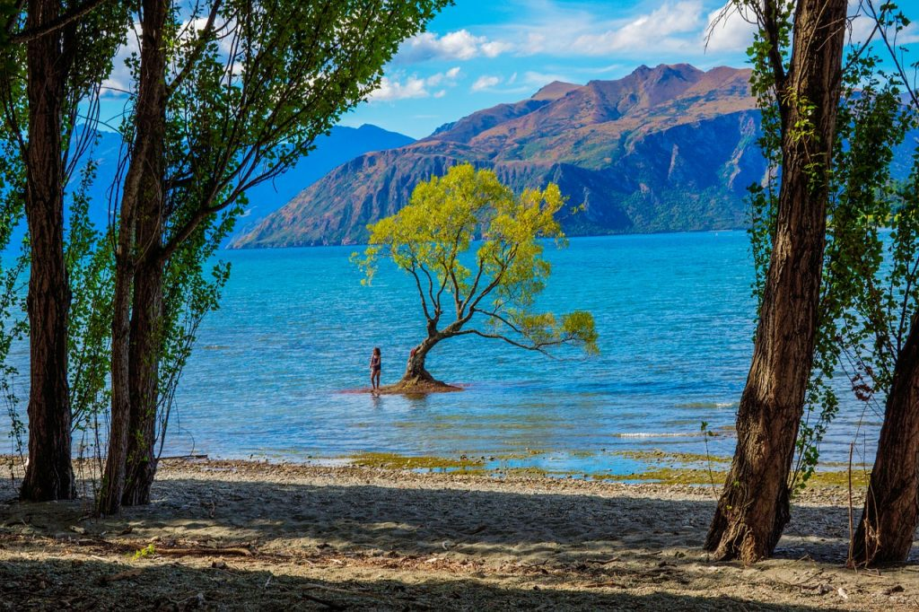 new-zealand-wanaka