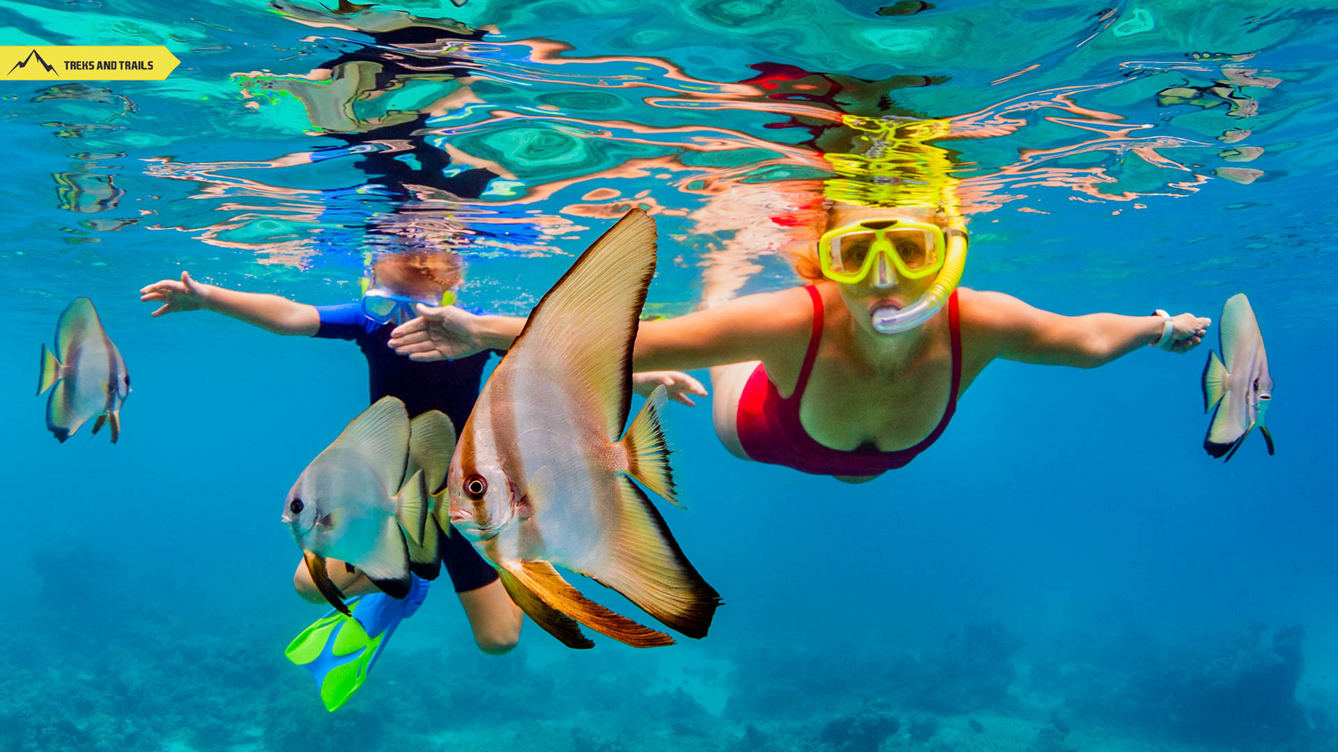 scuba-diving-thailand