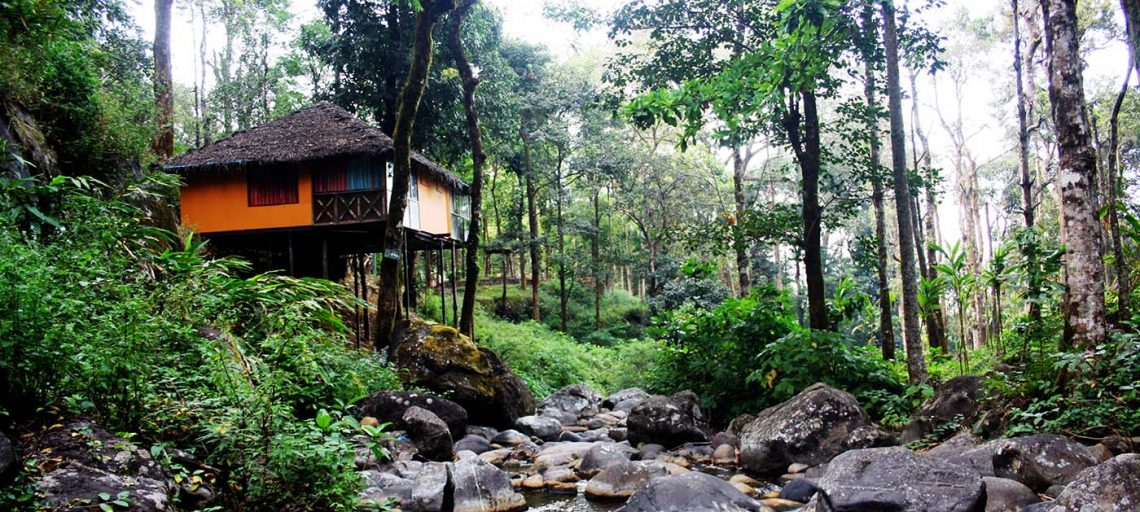Top Ten Tree House Resorts in India