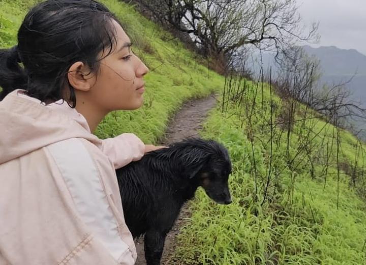 Dogs on treks